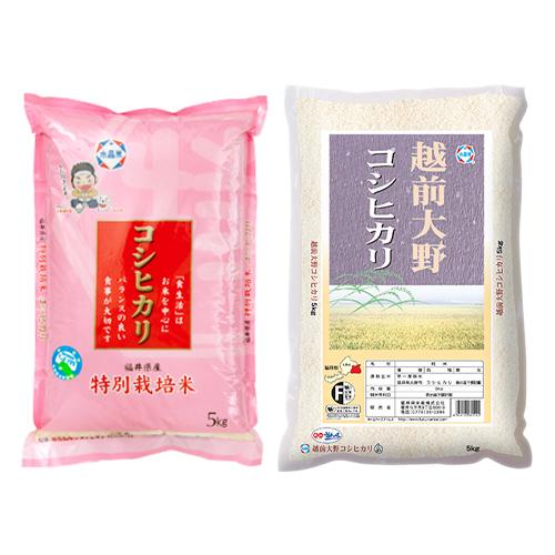 特別栽培米コシヒカリ5㎏と大野コシヒカリ5㎏ セット 年産