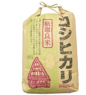 福井県産コシヒカリ玄米 24年産