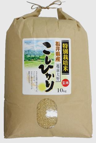福井県産特別栽培米コシヒカリ玄米 46年産