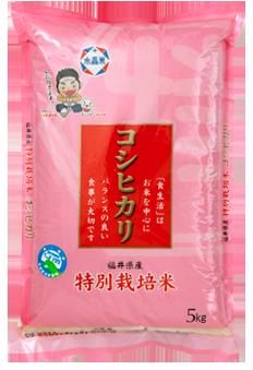 福井県産特別栽培米コシヒカリ 令和元年産年産