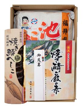 池田町コシヒカリ5kgと福井名産へしこ セット